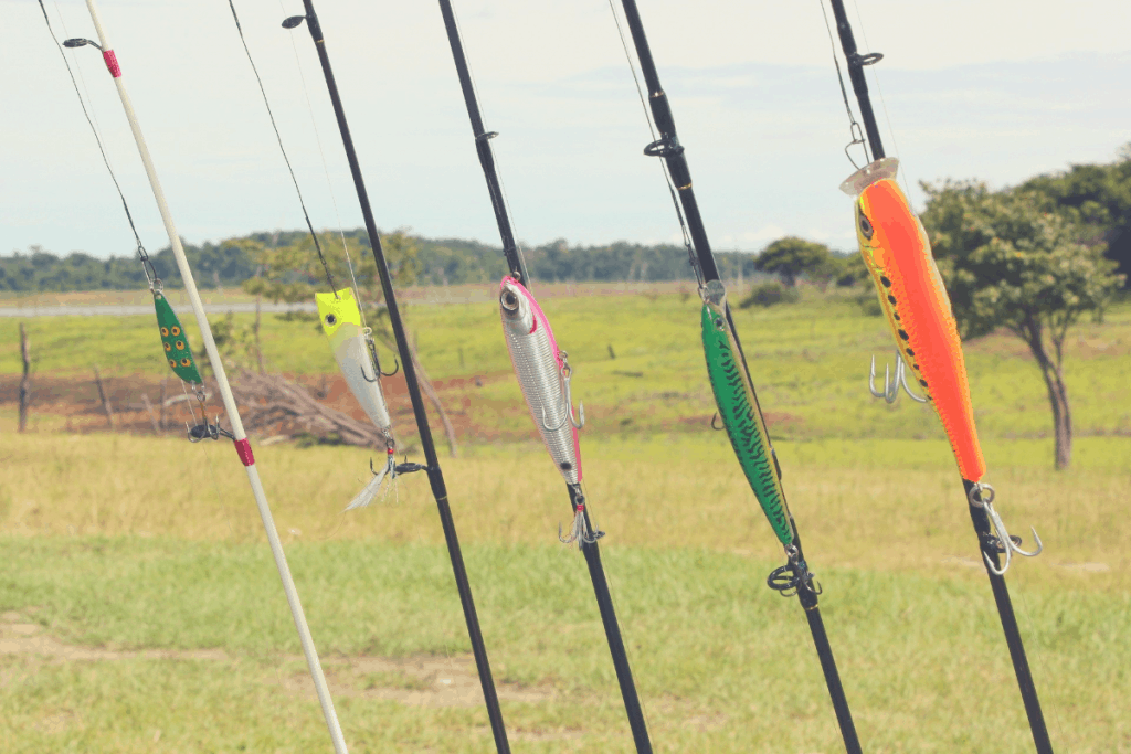 spinning rods with different lures