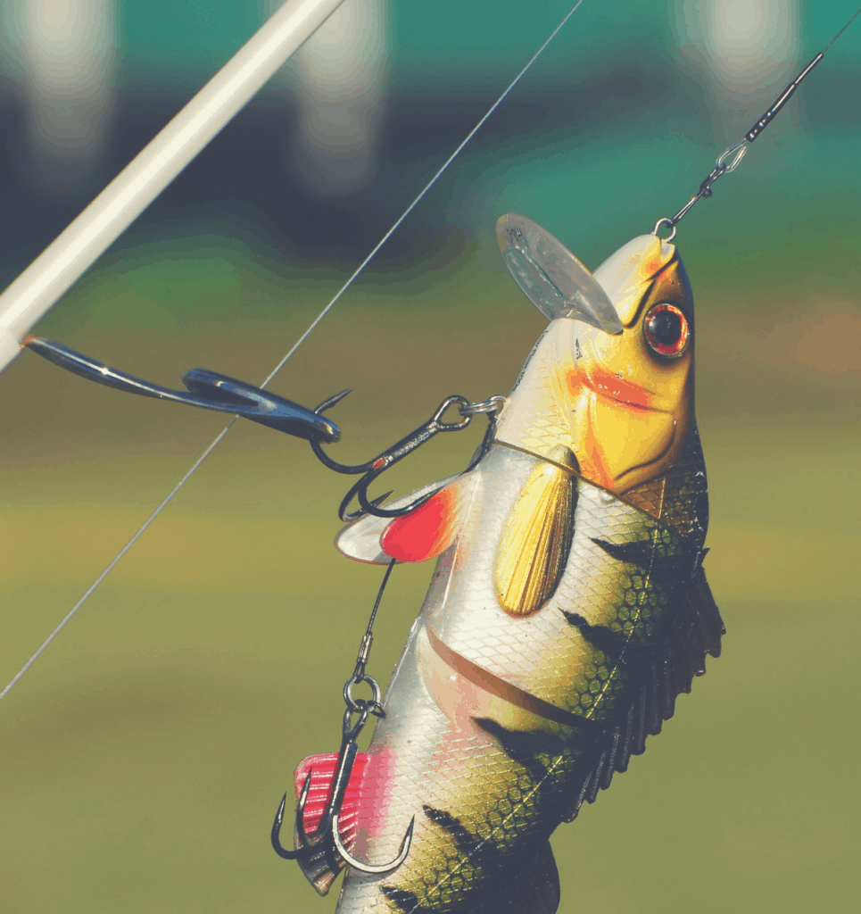 lure rigged to spinning rod