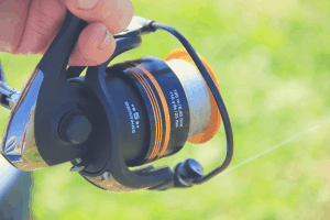 spinning reel spooled with monofilament